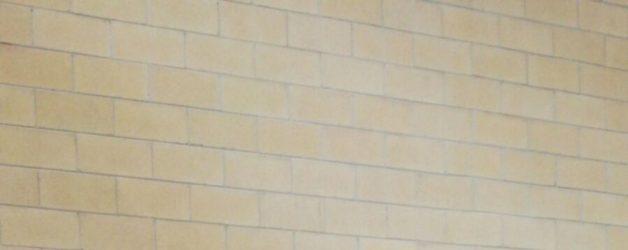 Camp. Regionali Juniores 2018 Bronzo per Bendif Yaakoub